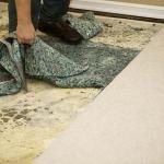 Water Soaked Carpet Pad